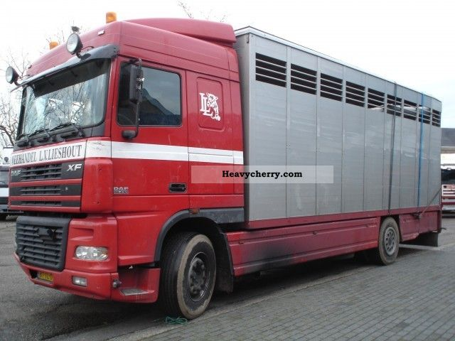 2003 DAF  XF 95-430 4X2 Truck over 7.5t Horses photo
